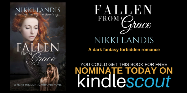Fallen from Grace by Nikki Landis FACEBOOK and TWITTER TEASER